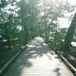 """サウナの聖地で""""整う""""、ついでに世界遺産もね─in静岡"""