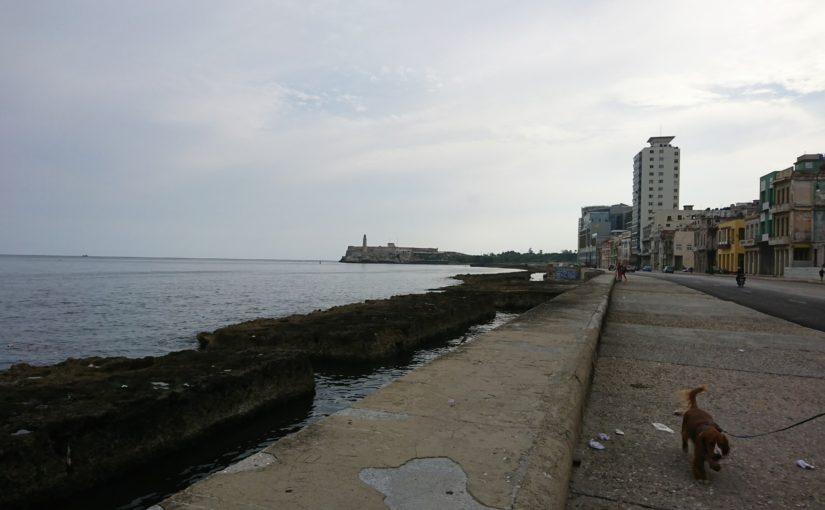 行っとこっかキューバ④マレコン通り(ほぼ写真)と葉巻購入体験